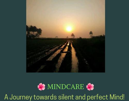 mindcaremagic